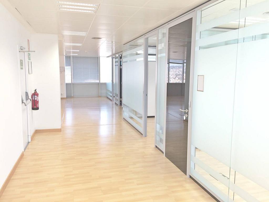Oficina en alquiler en calle Tarragona, Hostafrancs en Barcelona - 377416696