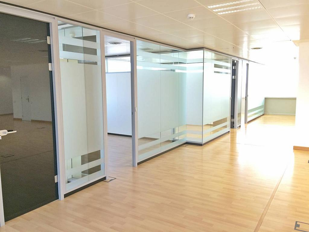 Oficina en alquiler en calle Tarragona, Hostafrancs en Barcelona - 377416704