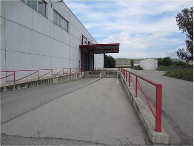 Nave industrial en alquiler en calle El Raiguer, Montornès del Vallès - 139869382