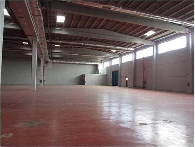 Nave industrial en alquiler en calle El Raiguer, Montornès del Vallès - 139869403