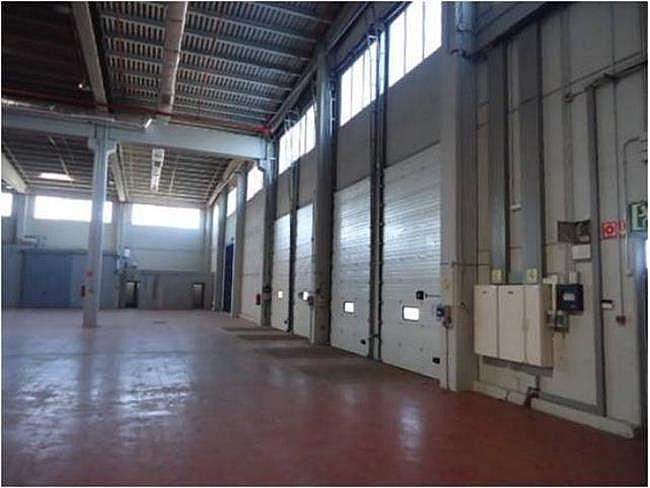 Nave industrial en alquiler en calle El Raiguer, Montornès del Vallès - 139869409