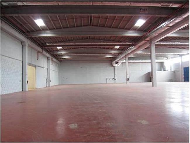 Nave industrial en alquiler en calle El Raiguer, Montornès del Vallès - 139869412