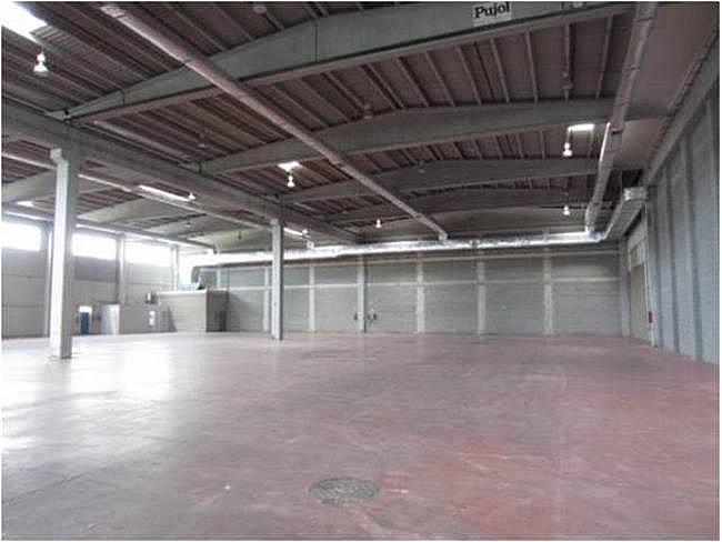 Nave industrial en alquiler en calle El Raiguer, Montornès del Vallès - 139869415