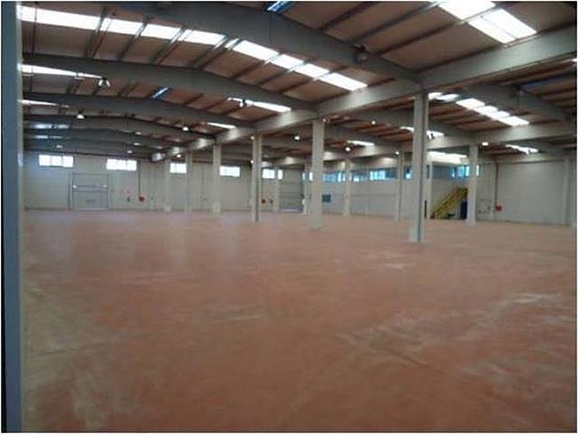 Nave industrial en alquiler en calle El Raiguer, Montornès del Vallès - 139869418