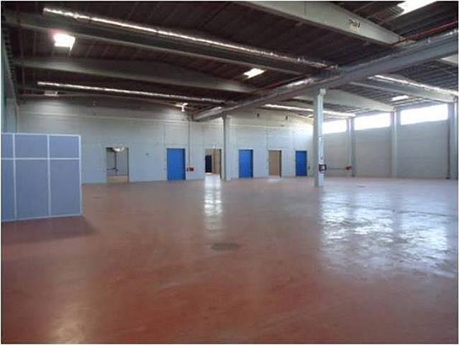 Nave industrial en alquiler en calle El Raiguer, Montornès del Vallès - 139869421