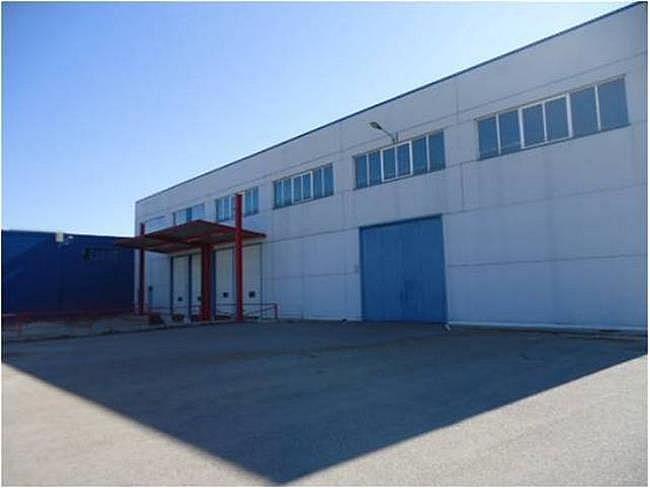 Nave industrial en alquiler en calle El Raiguer, Montornès del Vallès - 140531053