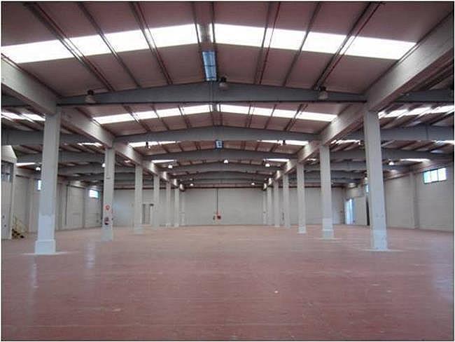Nave industrial en alquiler en calle El Raiguer, Montornès del Vallès - 140531059