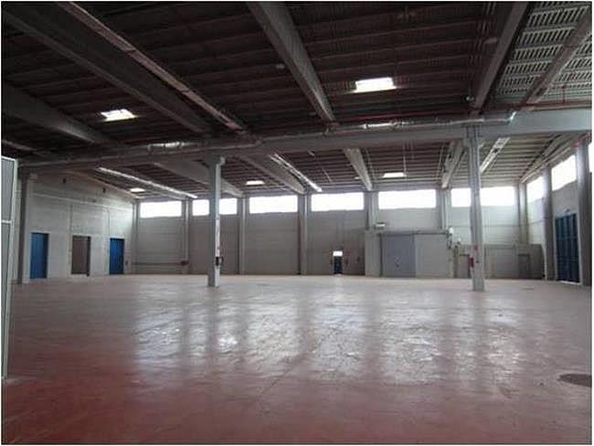 Nave industrial en alquiler en calle El Raiguer, Montornès del Vallès - 140531062