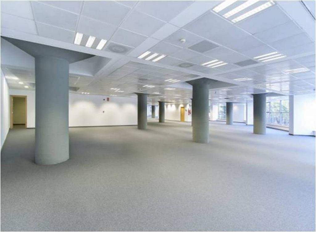 Oficina en alquiler en calle Joan D'austria, La Vila Olímpica en Barcelona - 351493740