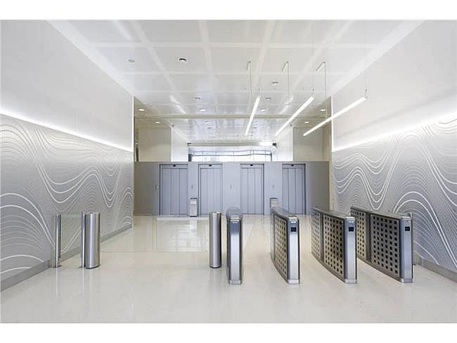 Oficina en alquiler en calle Gran Via de Les Corts Catalane, Sants-montjuïc en Barcelona - 128090697