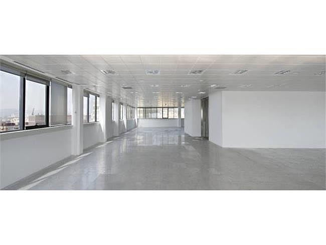Oficina en alquiler en calle Gran Via de Les Corts Catalane, Sants-montjuïc en Barcelona - 128090700