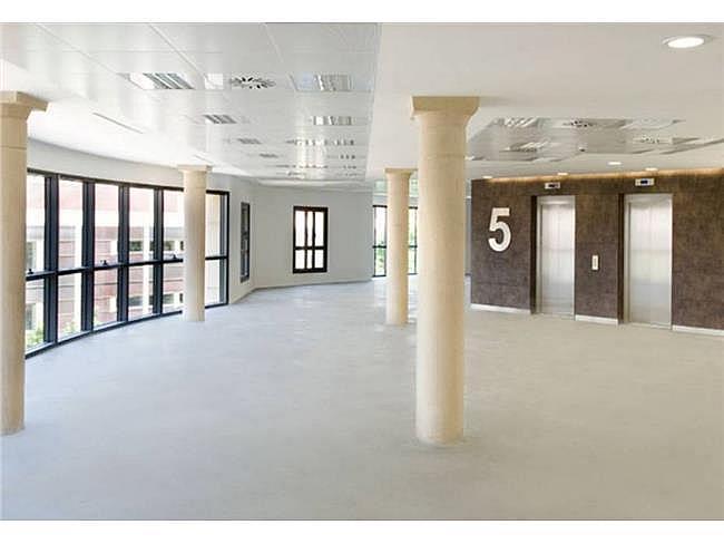 Oficina en alquiler en calle Ausias Marc, Barcelona - 127899340