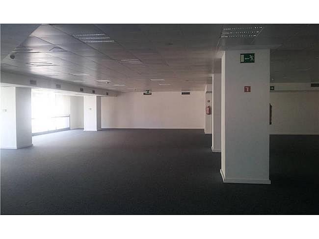 Oficina en alquiler en calle Avila, Sant martí en Barcelona - 163839433
