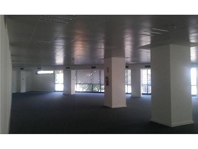 Oficina en alquiler en calle Avila, Sant martí en Barcelona - 163839442