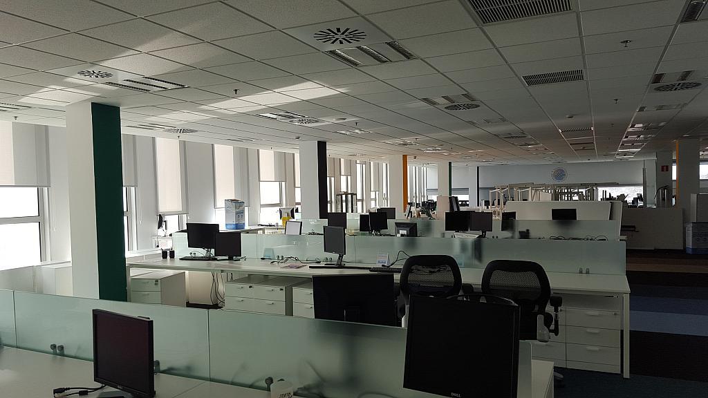Oficina en alquiler en calle Rio de Janeiro, Porta en Barcelona - 218879903