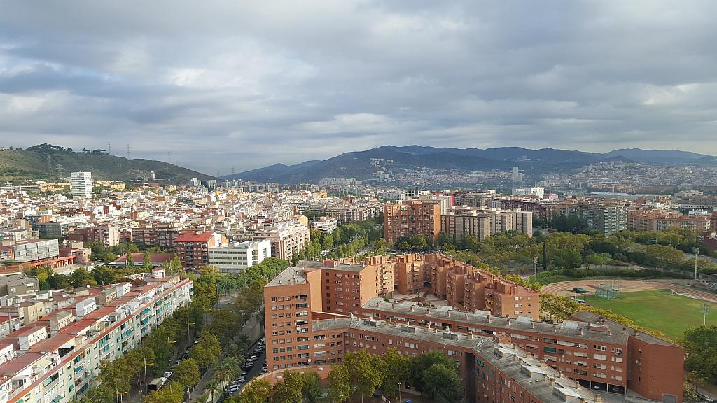Oficina en alquiler en calle Rio de Janeiro, Porta en Barcelona - 218880064