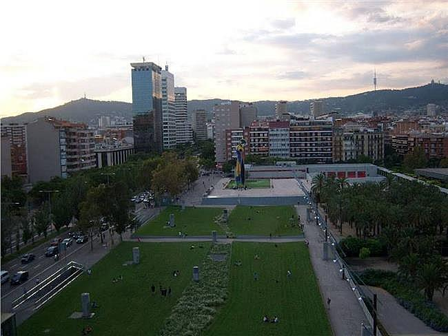 Oficina en alquiler en calle Tarragona, Hostafrancs en Barcelona - 189948909