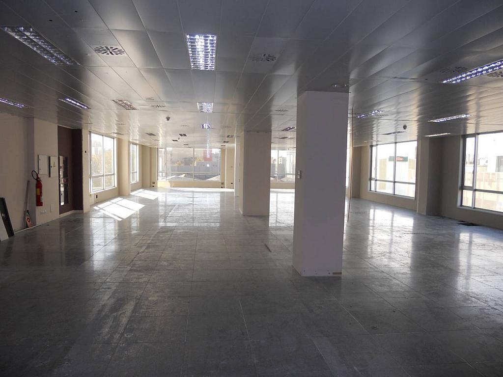 Oficina en alquiler en calle Veneçuela, Provençals del Poblenou en Barcelona - 242049141