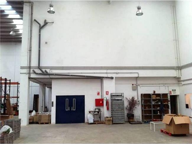 Nave industrial en alquiler en calle Fontsanta, Sant Joan Despí - 130636361