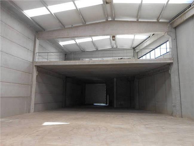 Nave industrial en alquiler en calle Nordeste, Sant Andreu de la Barca - 142130619
