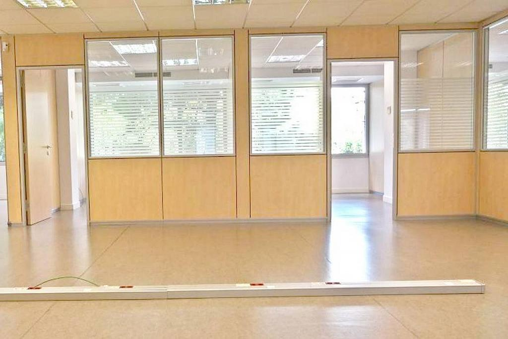 Oficina en alquiler en calle Diagonal, Sant Ramon-La Maternitat en Barcelona - 256037286