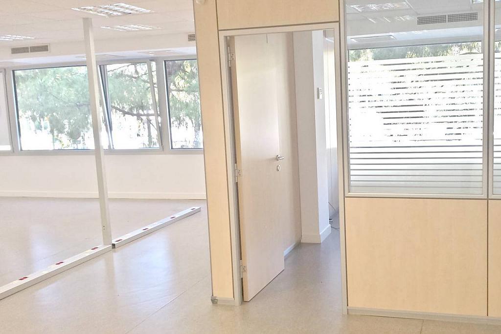 Oficina en alquiler en calle Diagonal, Sant Ramon-La Maternitat en Barcelona - 256037303
