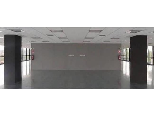 Oficina en alquiler en calle Camí de Can Ametller, Sant Cugat del Vallès - 171490343