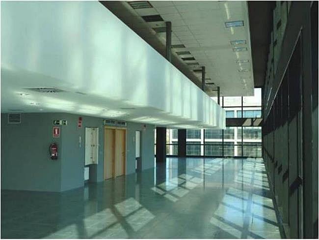Oficina en alquiler en calle Camí de Can Ametller, Sant Cugat del Vallès - 171490361