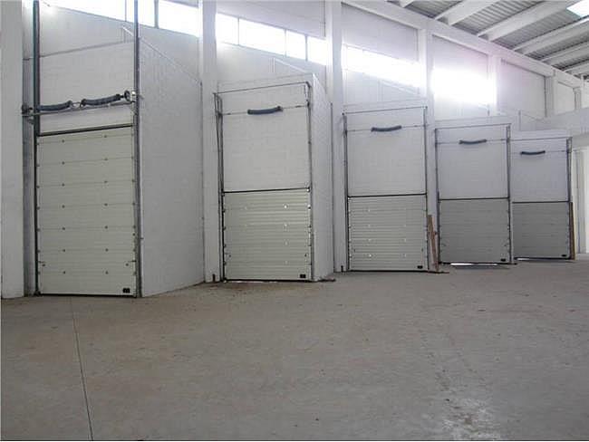 Nave industrial en alquiler en calle Congost, Montornès del Vallès - 176444647