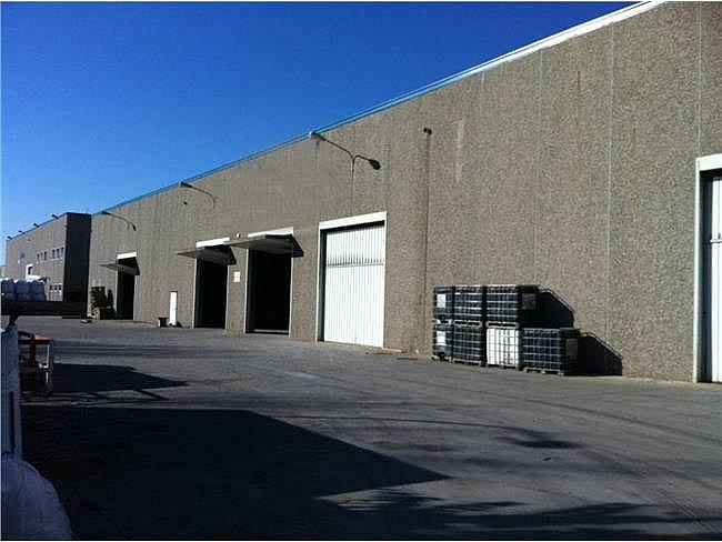 Nave industrial en alquiler en calle Sant Feliu de Buixalleu, Sant Feliu de Buixalleu - 174698962