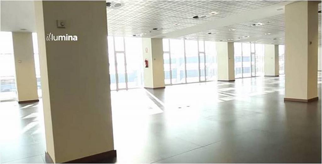 Oficina en alquiler en calle Gaspar Fabregas, El gall en Esplugues de Llobregat - 202889761