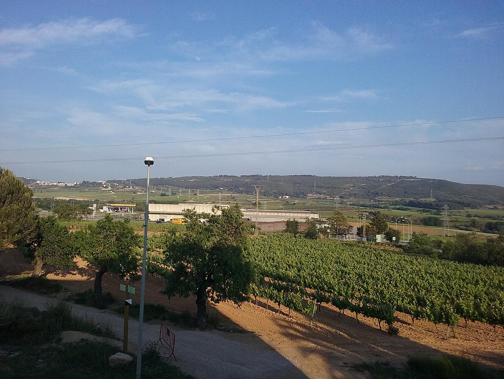 Masía en alquiler en calle Cases Rojes, Sant Cugat Sesgarrigues - 278098734