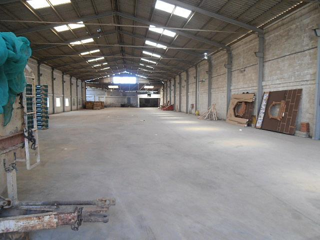 Detalles - Nave industrial en alquiler en calle Wwwinmobiliariaanvicom, Benaguasil - 157374454