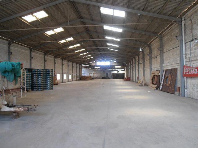 Detalles - Nave industrial en alquiler en calle Wwwinmobiliariaanvicom, Benaguasil - 157374457