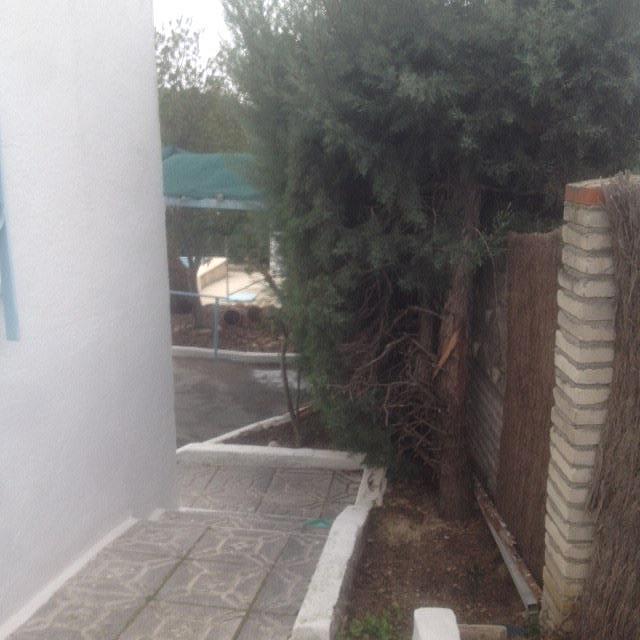 Chalet en alquiler en calle Martires, Álamo (El) - 237259869