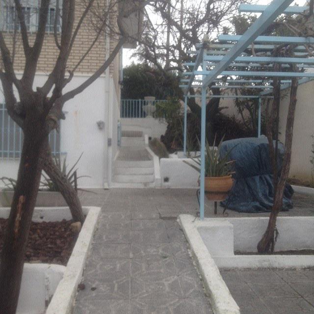 Chalet en alquiler en calle Martires, Álamo (El) - 237259885