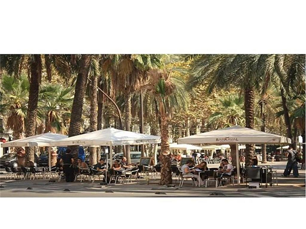 Piso en alquiler en El Raval en Barcelona - 337377405
