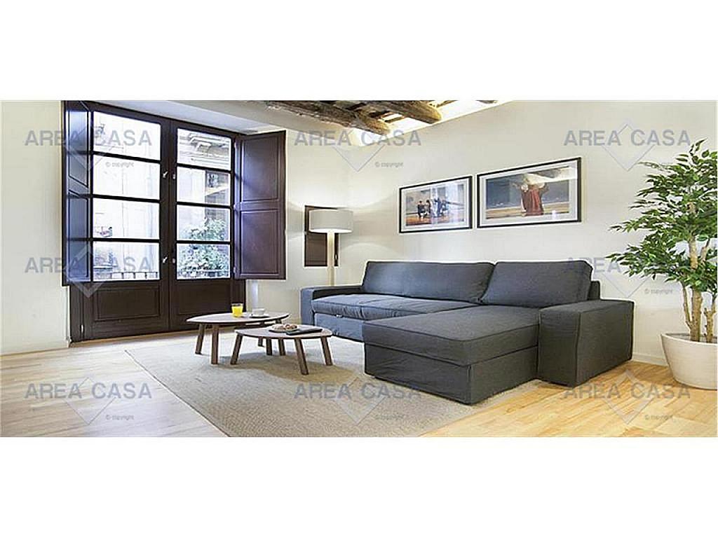 Piso en alquiler en Born-Santa Caterina-Sant Pere-La Ribera en Barcelona - 334981899
