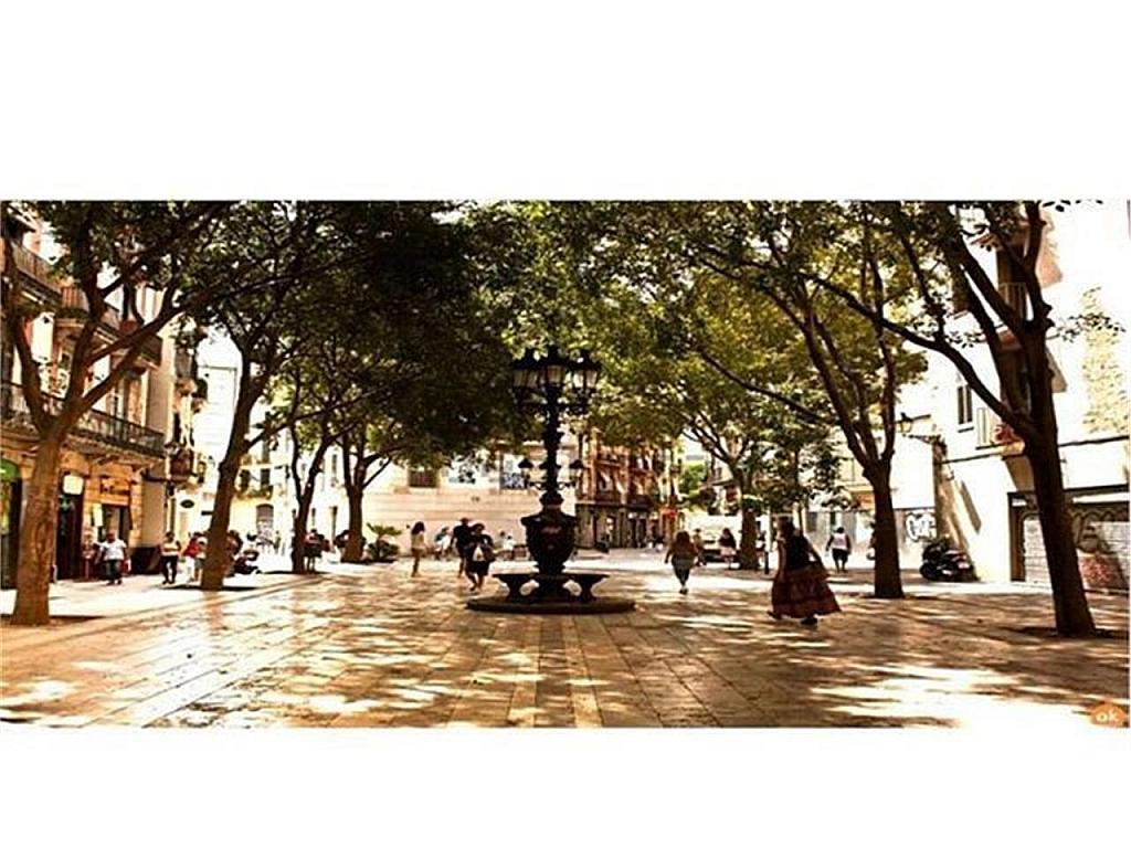 Piso en alquiler en Ciutat vella en Barcelona - 317459399