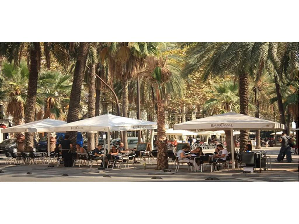 Piso en alquiler en El Raval en Barcelona - 317933535