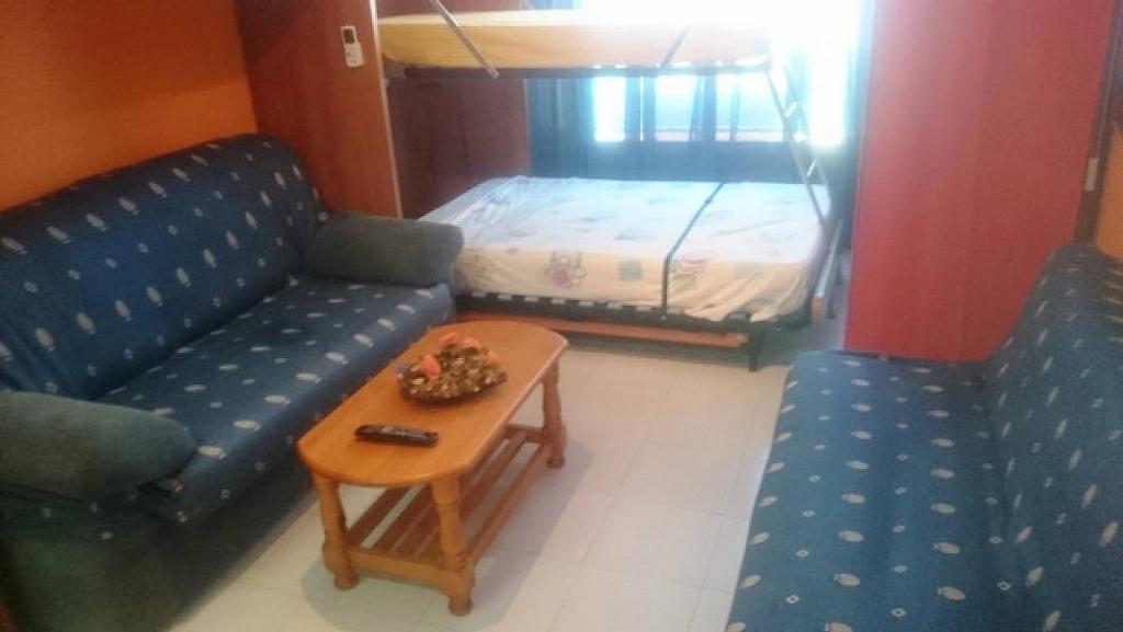 Foto - Estudio en alquiler en calle Habaneras, Torrevieja - 309650825