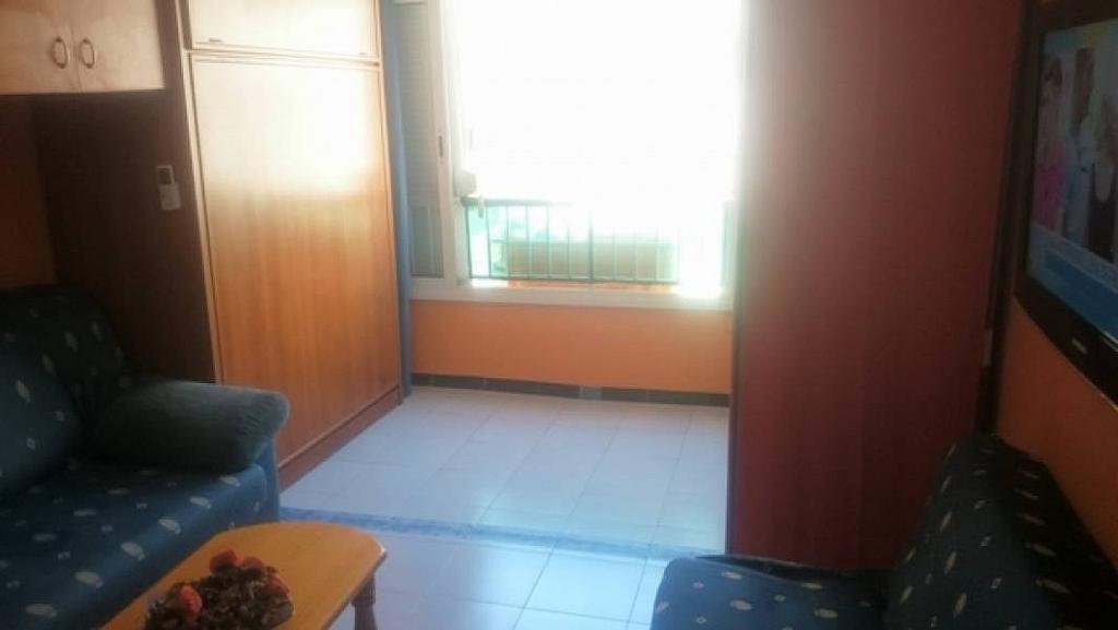 Foto - Estudio en alquiler en calle Habaneras, Torrevieja - 309650834
