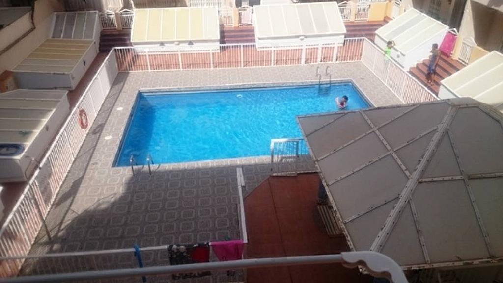 Foto - Estudio en alquiler en calle Habaneras, Torrevieja - 309650852