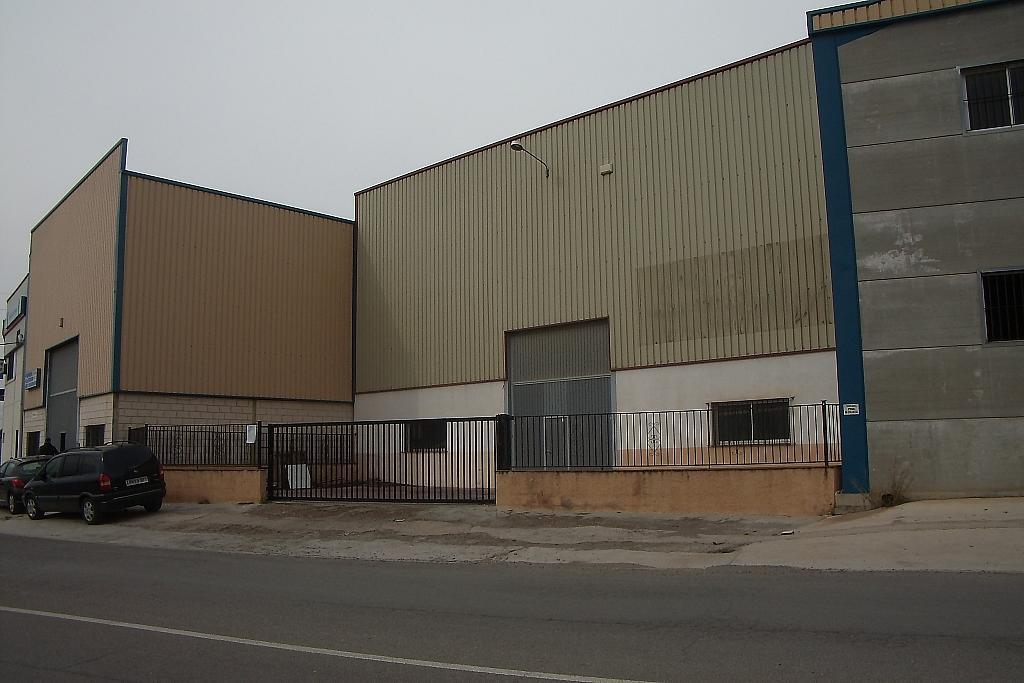 Foto - Nave industrial en alquiler en calle Centro, Llíria - 316630527
