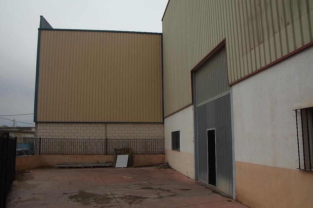 Foto - Nave industrial en alquiler en calle Centro, Llíria - 316630536