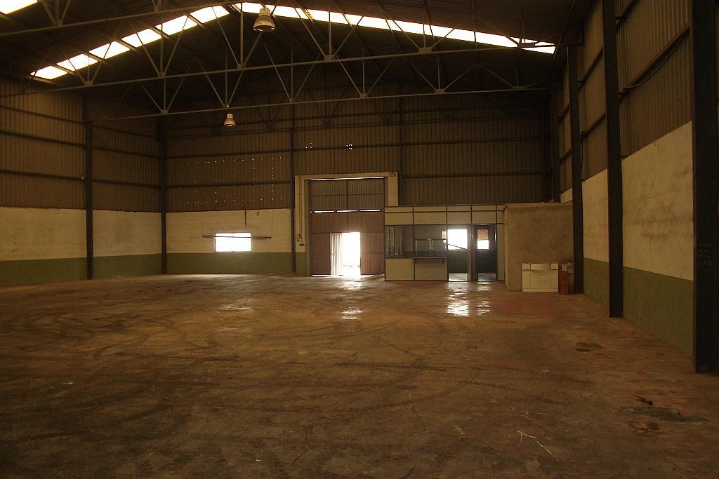 Foto - Nave industrial en alquiler en calle Centro, Llíria - 316630542