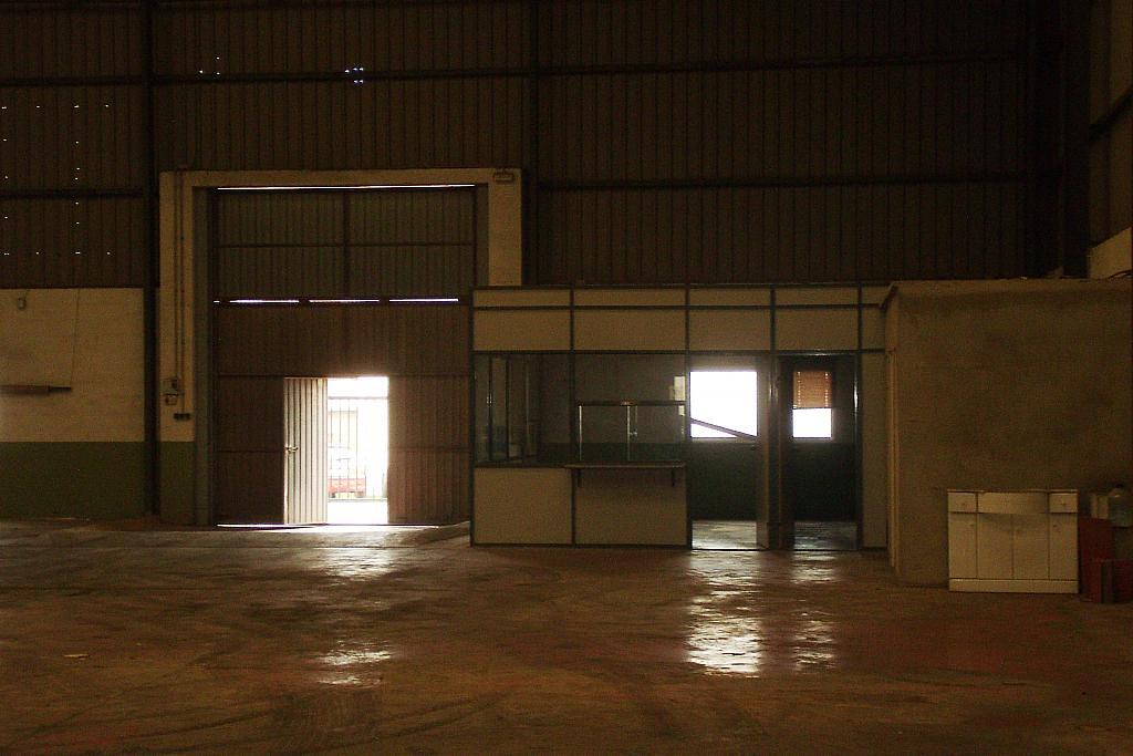 Foto - Nave industrial en alquiler en calle Centro, Llíria - 316630545