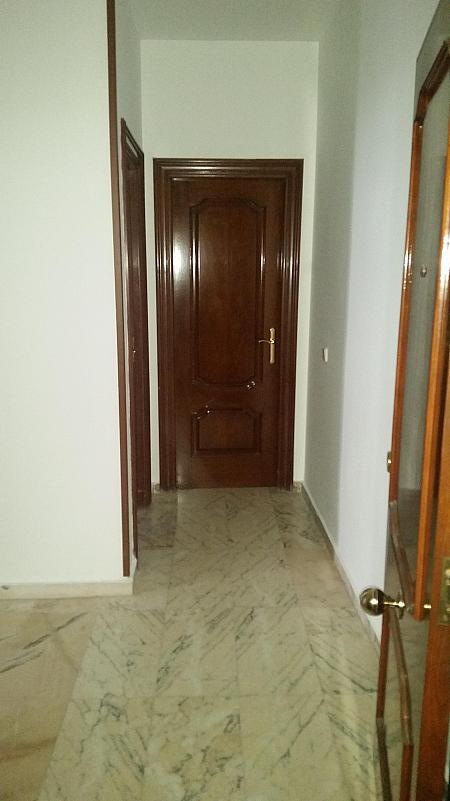 Vestíbulo - Piso en alquiler en calle Castelar, Centro Historico en Almería - 207809381