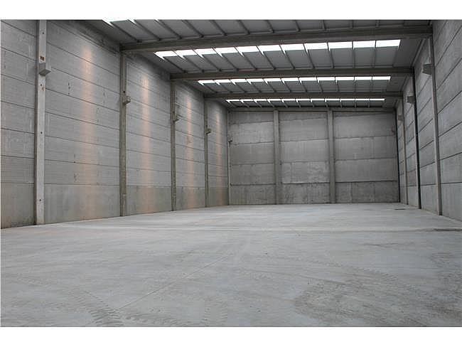Nave industrial en alquiler en Porriño (O) - 353346986