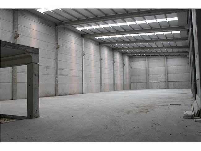Nave industrial en alquiler en Porriño (O) - 353346992